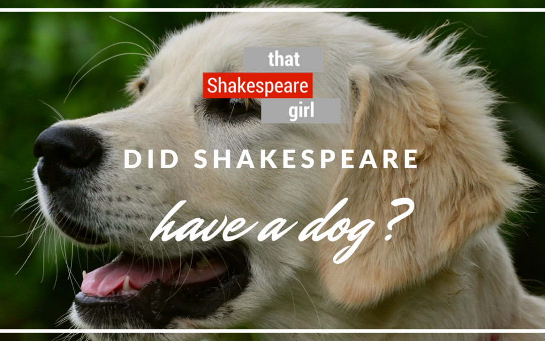 Did Shakespeare Have a Dog? | New on YouTube